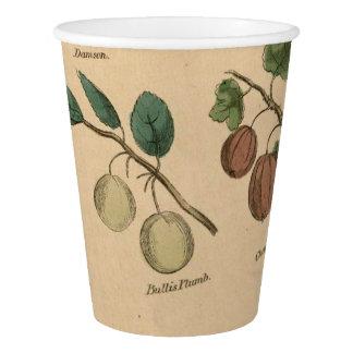 Frutas y hojas vaso de papel