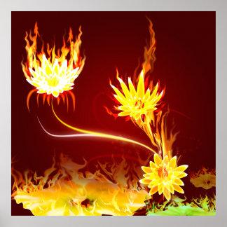 Fuego Lotus Póster