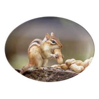 Fuente De Porcelana Chipmunk que come un cacahuete