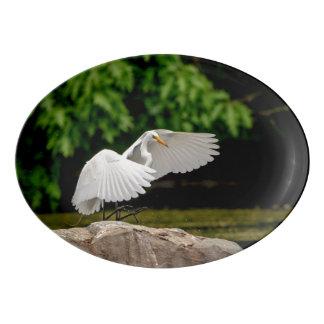 Fuente De Porcelana Gran Egret
