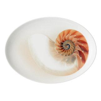 Fuente De Porcelana Shell de la vida
