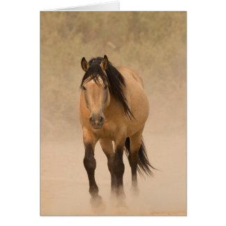 Fuera de la tarjeta de felicitación del caballo