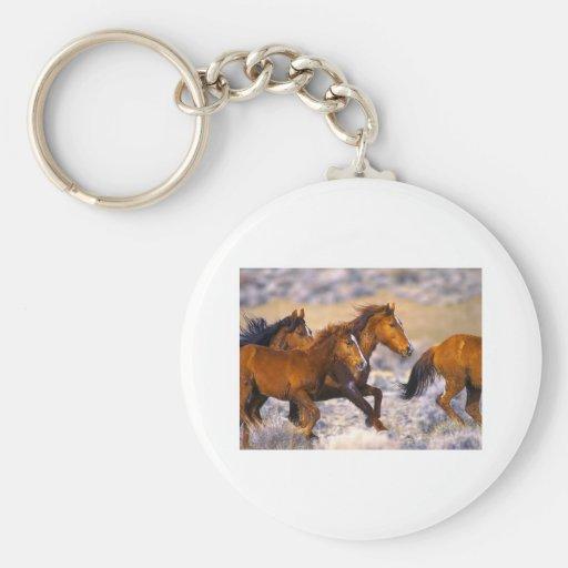 Funcionamiento de los caballos llavero personalizado