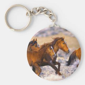 Funcionamiento de los caballos llavero redondo tipo chapa