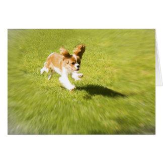 Funcione con el perrito funcionado con en la tarjeta de felicitación
