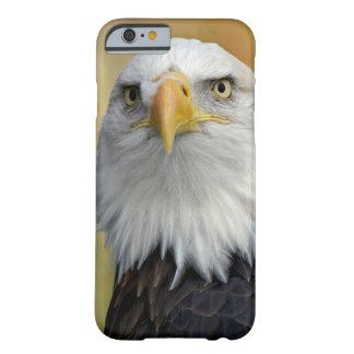 Funda Barely There iPhone 6 Águila calva americana