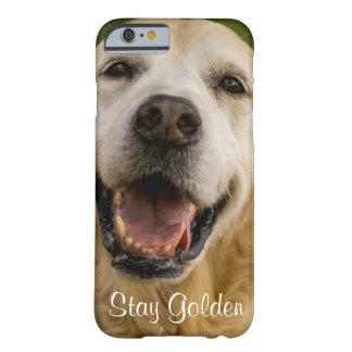 Funda Barely There iPhone 6 Caja de oro del iPhone del golden retriever de la