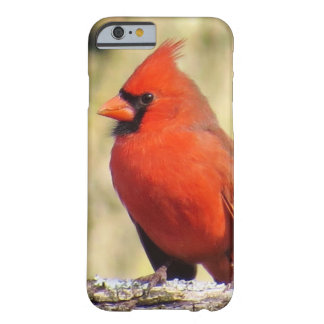 Funda Barely There iPhone 6 Caso cardinal de IPhone