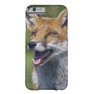 Funda Barely There iPhone 6 iPhone sonriente 6 del Fox