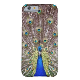 Funda Barely There iPhone 6 Pavo real hermoso