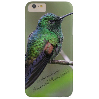 Funda Barely There iPhone 6 Plus colibrí Raya-atado