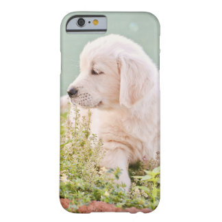 Funda Barely There Para iPhone 6 Caso del iPhone 6/6S del golden retriever