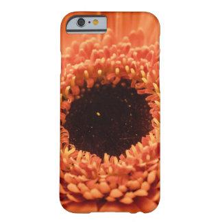 Funda Barely There Para iPhone 6 Margarita anaranjada grande del Gerbera