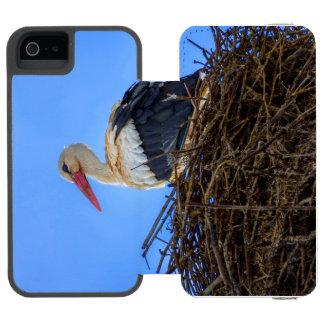 Funda Cartera Para iPhone 5 Watson Cigüeña blanca europea, ciconia, en la jerarquía