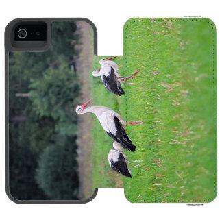 Funda Cartera Para iPhone 5 Watson Cigüeñas blancas de la migración, ciconia, en un