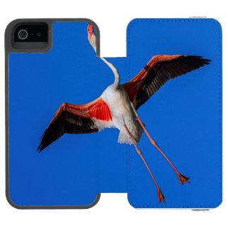 Funda Cartera Para iPhone 5 Watson Mayor flamenco, roseus del phoenicopterus