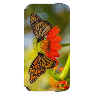 Funda Cartera Para iPhone 6 Watson Mariposas de monarca en Wildflowers