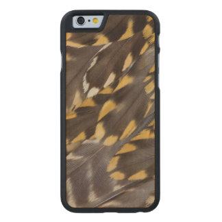Funda De Arce Para iPhone 6 De Carved Plumas del chorlito de oro