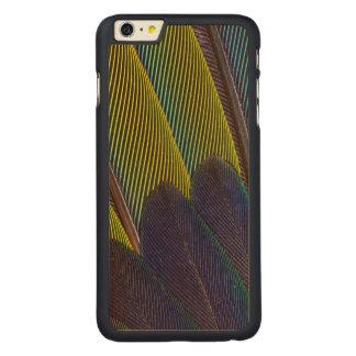 Funda De Arce Para iPhone 6 Plus De Carved Detalle de la pluma de Jenday Conure