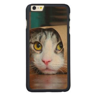 Funda De Arce Para iPhone 6 Plus De Carved Gato de papel - gatos divertidos - meme del gato -