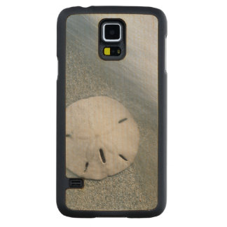 Funda Fina De Arce Para Galaxy S5 De Carved Sanddollar en la isla de la playa el | Sanibel, la