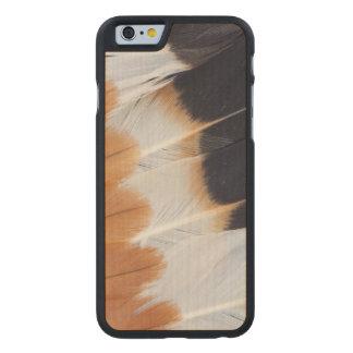 Funda Fina De Arce Para iPhone 6 De Carved Extracto septentrional de la pluma de la avefría