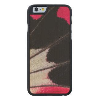 Funda Fina De Arce Para iPhone 6 De Carved Modelo del ala del detalle de la mariposa tropical