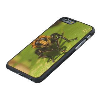 Funda Fina De Arce Para iPhone 6 De Carved Mosca de ladrón