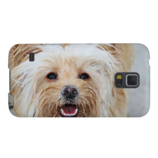 Funda Galaxy S5 Farris - Lucy - raza mezclada