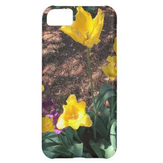 Funda iPhone 5C Tipo amarillo flores del tulipán de la primavera