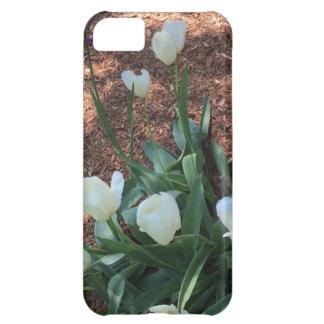 Funda iPhone 5C Tipo blanco como la nieve flores del tulipán en un