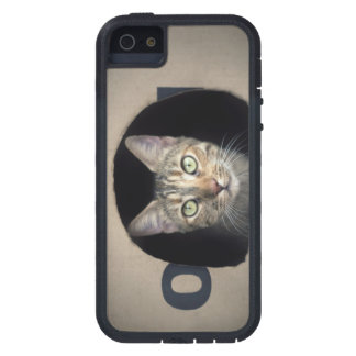 Funda iPhone SE/5/5s Gato