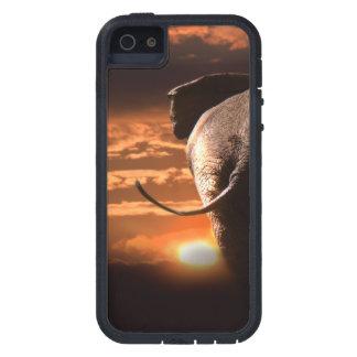 Funda iPhone SE/5/5s Puesta del sol con el elefante