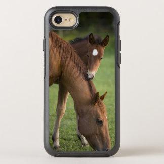 Funda OtterBox Symmetry Para iPhone 8/7 Yegua y potro cuartos americanos del caballo en