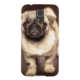 Funda Para Galaxy S5 Barro amasado precioso del perrito, perro,