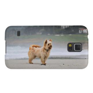Funda Para Galaxy S5 Farris - Lucy - raza mezclada