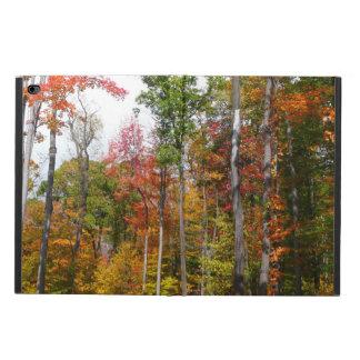 Funda Para iPad Air 2 Caída en la fotografía colorida del otoño del