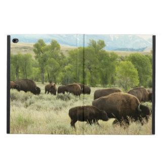 Funda Para iPad Air 2 Fotografía del animal de la naturaleza del bisonte