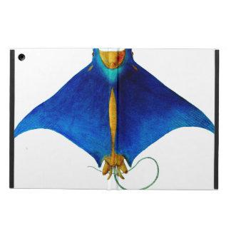 Funda Para iPad Air rayo de manta