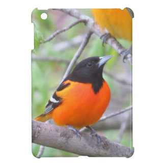 Funda Para iPad Mini Baltimore Oriole