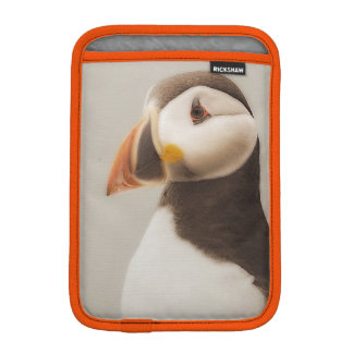 Funda Para iPad Mini Caso del frailecillo