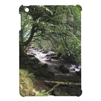 Funda Para iPad Mini Corriente irlandesa