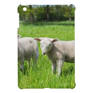 Funda Para iPad Mini Dos ovejas holandesas blancas en prado verde de la