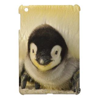 Funda Para iPad Mini Emperador animal de la vida antártica del bebé del