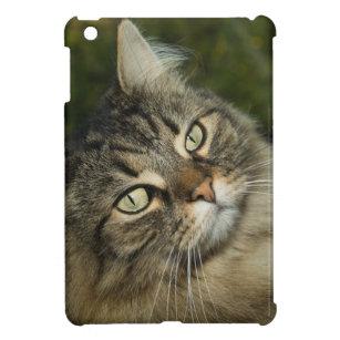 Funda Para iPad Mini Gato nacional dulce Curiou del gato noruego del