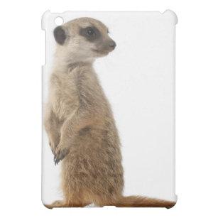 ea38266b295 Funda Para iPad Mini Meerkat o Suricate - surica del Suricata