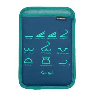 Funda Para iPad Mini Meteorología