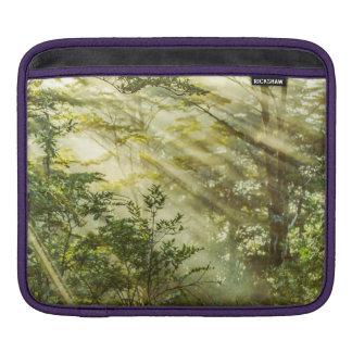 Funda Para iPad Parque de Queulat, paisaje del bosque de la