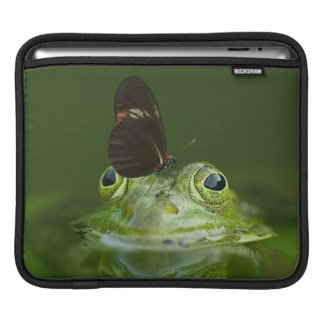Funda Para iPad Rana verde y mariposa