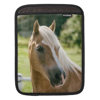 Funda Para iPad Retrato hermoso del caballo del haflinger